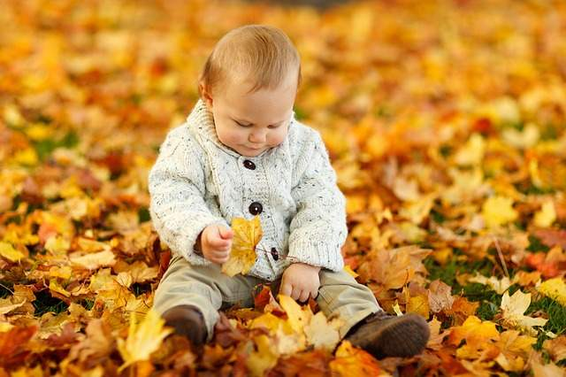 Bambino autunno